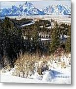 Snake River Overlook Metal Print