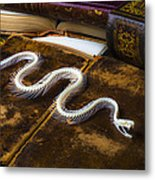 Snake Skeleton And Old Books Metal Print