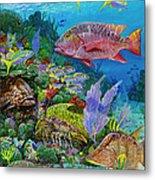 Snapper Reef Re0028 Metal Print