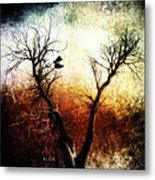Sneakers In The Tree Metal Print