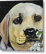 Sniff The Flowers Metal Print by Roger Wedegis