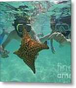 Snorkellers Holding A Four Legs Starfish Metal Print by Sami Sarkis