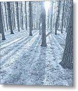 Snow Amongst The Pines Metal Print
