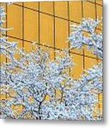 Snow And Golden Glass Metal Print
