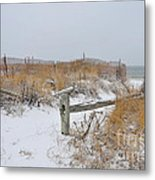 Snow And Sand Metal Print by Catherine Reusch Daley