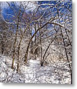Snow Arches Metal Print