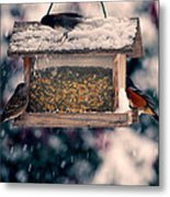 Snow Birds Metal Print