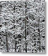Snow Branches Metal Print