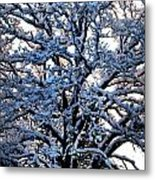 Snow Bright Metal Print