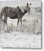 Snow By The Beach Metal Print