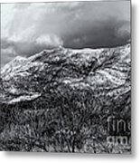 Snow Capped 45 Metal Print