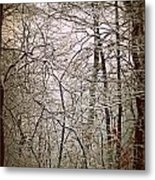 Snow Cover Forest Metal Print by Dawdy Imagery