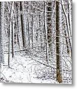 Snow Covered Forest 4 Metal Print