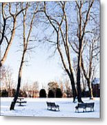 Snow Covered Green Metal Print