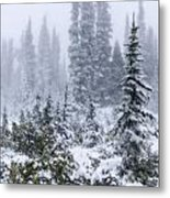 Snow Covered Mountain Ash Metal Print