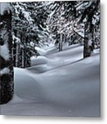 Snow Covered Trail Metal Print