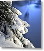 Snow Covered Tree Branches Metal Print