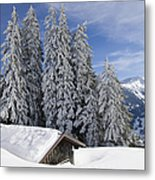 Snow Covered Trees And Mountains In Beautiful Winter Landscape Metal Print