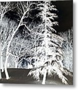 Snow Day Inverted Metal Print