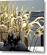 Snow Dust Metal Print