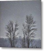 Snow Falling On Bare Trees Metal Print