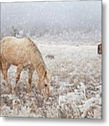 Snow Falling On Horses Metal Print