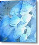 Snow Fishies Metal Print by Brett Geyer