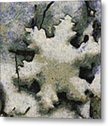 Snow Flake 04 Photo Art Metal Print