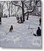 Snow Fun Metal Print