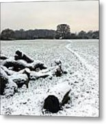 Snow In Surrey England Metal Print