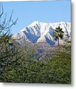 Snow In The Desert Metal Print