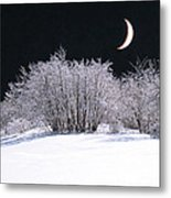 Snow In The Moonlight Metal Print by Giorgio Darrigo
