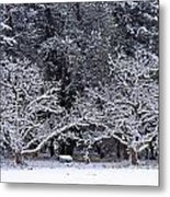 Snow In The Valley Metal Print