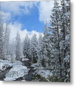 Snow In Yellowstone Metal Print by Diane Mitchell