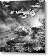 Snow Is In The Air Bw Metal Print
