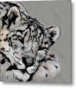 Snow Leopard Digital Art Metal Print
