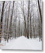 Snow On The Branchs Metal Print