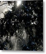 Snow Rays Metal Print