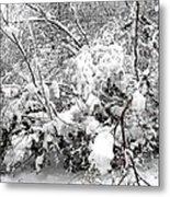 Snow Scene 4 Metal Print