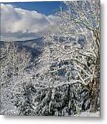 Snow Scene At Berry Summit Metal Print