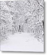 Snow Scene Tree Branches Metal Print