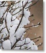 Snow Shower Metal Print