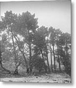 Snow Storm At The Mountains Metal Print