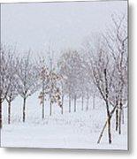 Snow Storm Metal Print