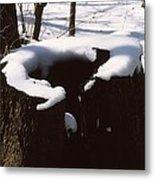 Snow Topping Log Metal Print