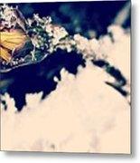 Snow Wildflower Metal Print