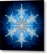 Snowflake - 2012 - A Metal Print by Richard Barnes