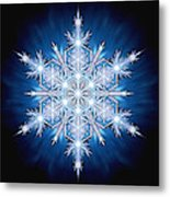 Snowflake - 2013 - A Metal Print by Richard Barnes