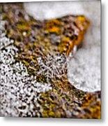 Snowflake On Rust Metal Print
