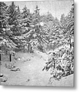 Snowing At The Forest Metal Print
